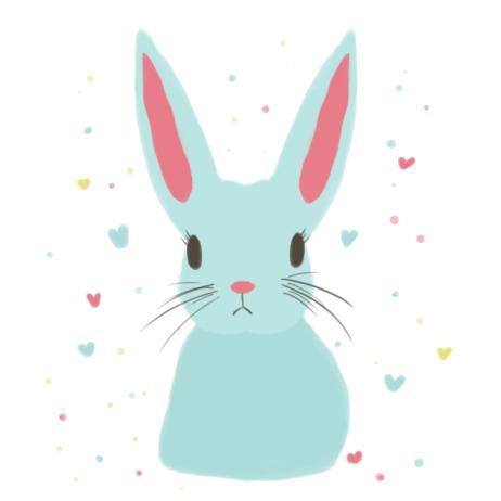 bunnynew